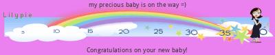 Lilypie Pregnancy (BcaD)