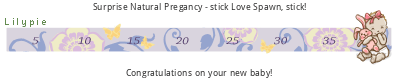 Lilypie Pregnancy tickers