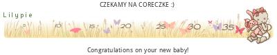 eKzyp1.png